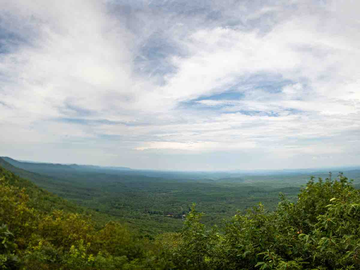 panoramic view from Cheaha Mountain