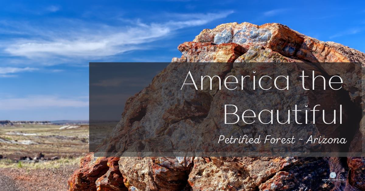 America the Beautiful: Petrified Forest – Arizona