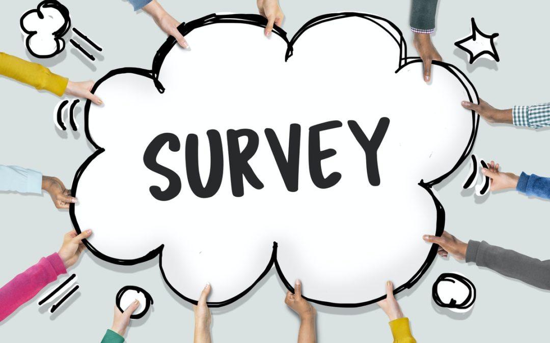 Traveler Survey